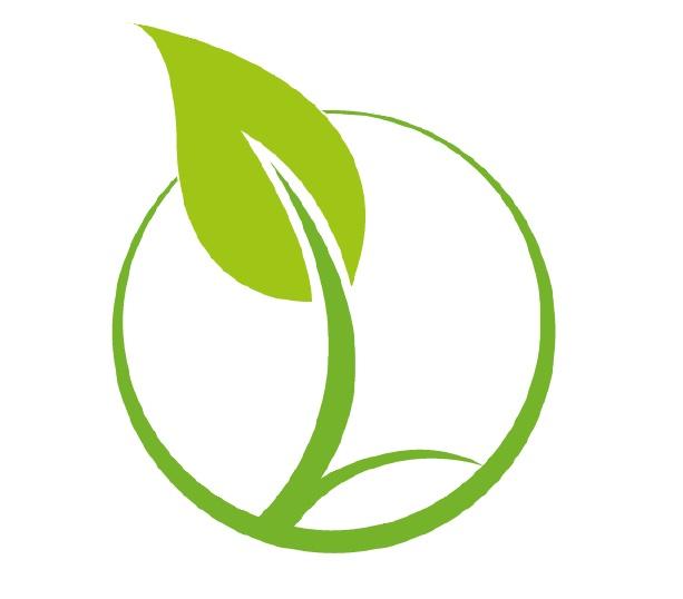Logo couleur seul
